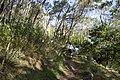 Bowral NSW 2576, Australia - panoramio (124).jpg