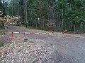 Bratřínov, lesní cesta, závora.jpg