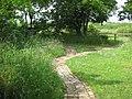 Brick footpath, Cowpen Bewley Woodland Park - geograph.org.uk - 1376933.jpg