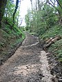 Bridleway SS61 - Brailes - geograph.org.uk - 406288.jpg