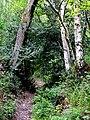 Bridleway to Chesterton, Shropshire - geograph.org.uk - 1305203.jpg