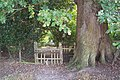 Broken Stile on High Weald Landscape Trail - geograph.org.uk - 1515779.jpg