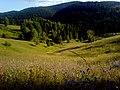 Brusnik, Serbia - panoramio (9).jpg