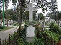 Bucuresti, Romania, Cimitirul Bellu Catolic, Mormantul lui Mircea Victor Babes (unicul fiu al ilustrului savant Victor Babes); B-IV-a-B-20118.JPG
