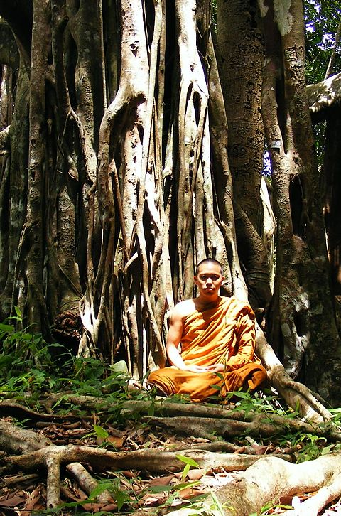 Living at the root of a tree (trukkhamulik'anga) is one of the dhutangas, a series of optional ascetic practices for Buddhist monastics. Buddhist monk in Khao Luang-Sukhothai.JPG