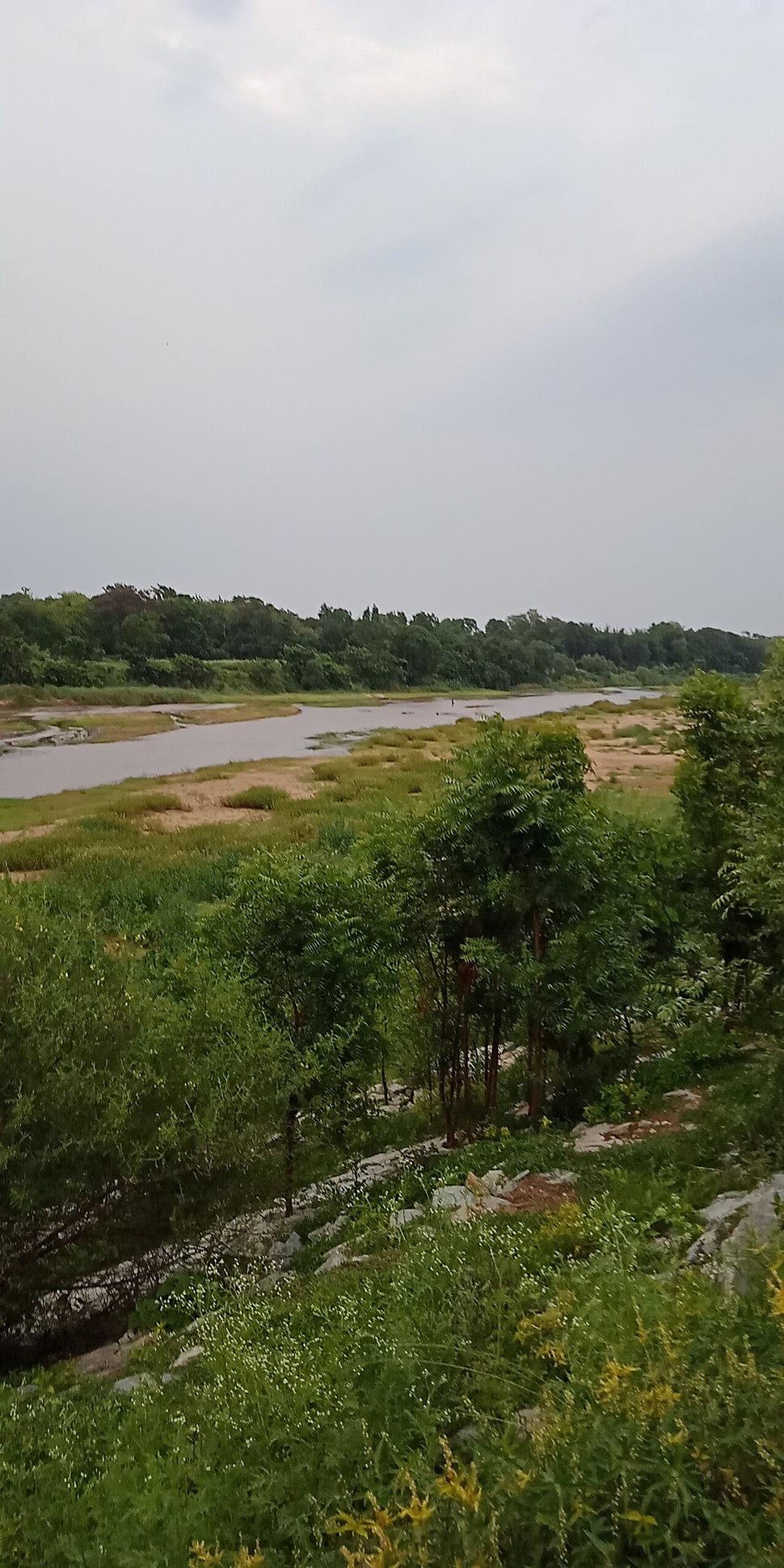 Budhabalanga river