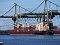 Bulk Endurance (ship, 2016) IMO 9782003, Mississippihaven, Port of Rotterdam pic1.jpg