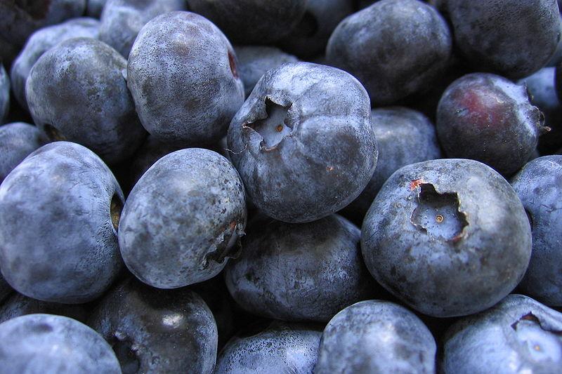 File:Bunch of blueberries.jpg