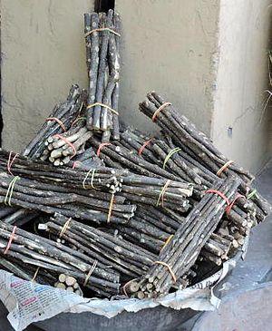 Teeth cleaning twig - Bunches of teeth cleaning twigs displayed near Kalka, India