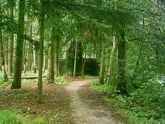 Brasschaat - Image: Bunker antitankkanaal