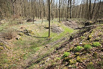 Schlüsselstein Castle - View of the outer section of ditch guarding the outer ward