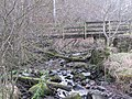 Burntongues Burn and Maggie's Bridge - geograph.org.uk - 716725.jpg