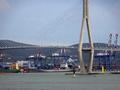 Busan Port Bridge and Ships.png