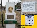 Busto y Placa.jpg
