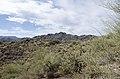 Butcher Jones Trail to Pinter's Point Loop, Tonto National Park, Saguaro Lake, Ft. McDowell, AZ - panoramio (126).jpg