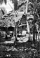 COLLECTIE TROPENMUSEUM Bananenbomen op het erf van een huis TMnr 10027879.jpg