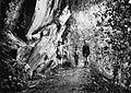 COLLECTIE TROPENMUSEUM Mannen en jongens poseren op een pad langs een rots bij Poenten TMnr 60025898.jpg