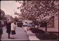 COUPLE PAUSES AT THE CORNER OF FIFTH AVENUE AND 79TH STREET TO ADMIRE THESE CRAB APPLE TREES AT THE PEAK OF THEIR BLOOM - NARA - 551742.tif