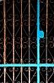 Cage (160793953).jpeg