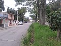 Calle 1 Norte Cadillal - panoramio.jpg