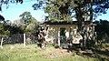 Calle Nutria M11 S4 - panoramio.jpg