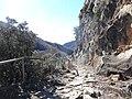 Camí a la Tosca de Degotalls, Sant Pere de Torelló (febrer 2013) - panoramio.jpg