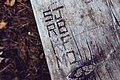 Campsite Picnic Table Carvings - Maplewood State Park (37794882711).jpg
