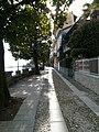 Cannero Riviera - Viale delle Magnolie (2).jpg
