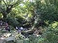 Caoling Historic Trail 草嶺古道 - panoramio (2).jpg
