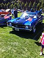 Car show at Party in the Park.JPG