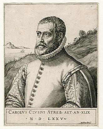 Martino Rota - Image: Carolus Clusius by Martin Rota