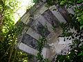 Cassinelle 2008-2.jpg