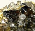 Cassiterite-Quartz-Siderite-289105.jpg