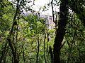 Catarata de Gocta darrera els arbres en el camí entre les dues caigudes.jpg