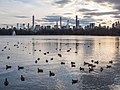 Central Park (10195).jpg
