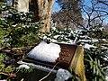 Chadwick Arboretum (32632715715).jpg