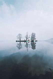 island in Dal Lake, Srinagar, Kashmir