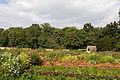 Chateau de Saint-Jean-de-Beauregard - 2014-09-14 - IMG 6723.jpg