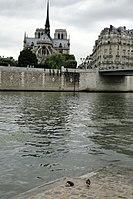 Chevet de Notre-Dame de Paris, depuis l'île Saint-Louis.jpg