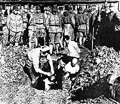 фото нанкинская резня