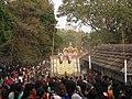 Chirankara Pooram Kala.JPG