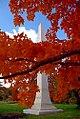 """Cincinnati - Spring Grove Cemetery & Arboretum """"Autumn Wrap"""" (8174501312).jpg"""