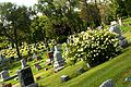 Circle Hill Cemetery Angola Indiana, looking west.JPG