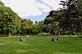 City Park (232179919).jpeg