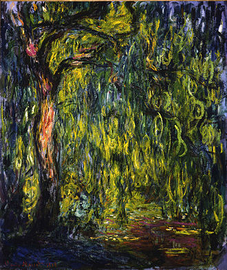 Salix babylonica - Weeping Willow, by Claude Monet (1918).