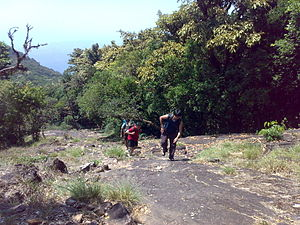 Pushpagiri (mountain) - Trekking Cliff1