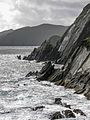 Cliffs - Ireland - August 13, 2008 02.jpg