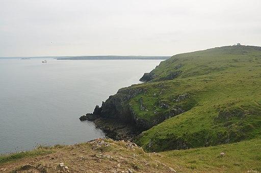 Cliffs at Martin's Haven (7113)