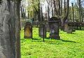 Cmentarz żydowski w Kamiennej Górze(Aw58)SDC11386.JPG