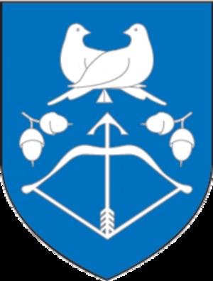 Drahichyn - Image: Coat of Arms of Drahičyn, Belarus